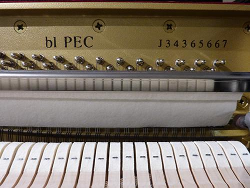 B1-PEC-5