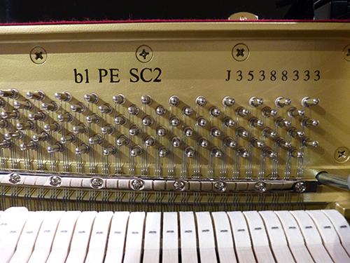 B1 SC 2 PE-neu-6